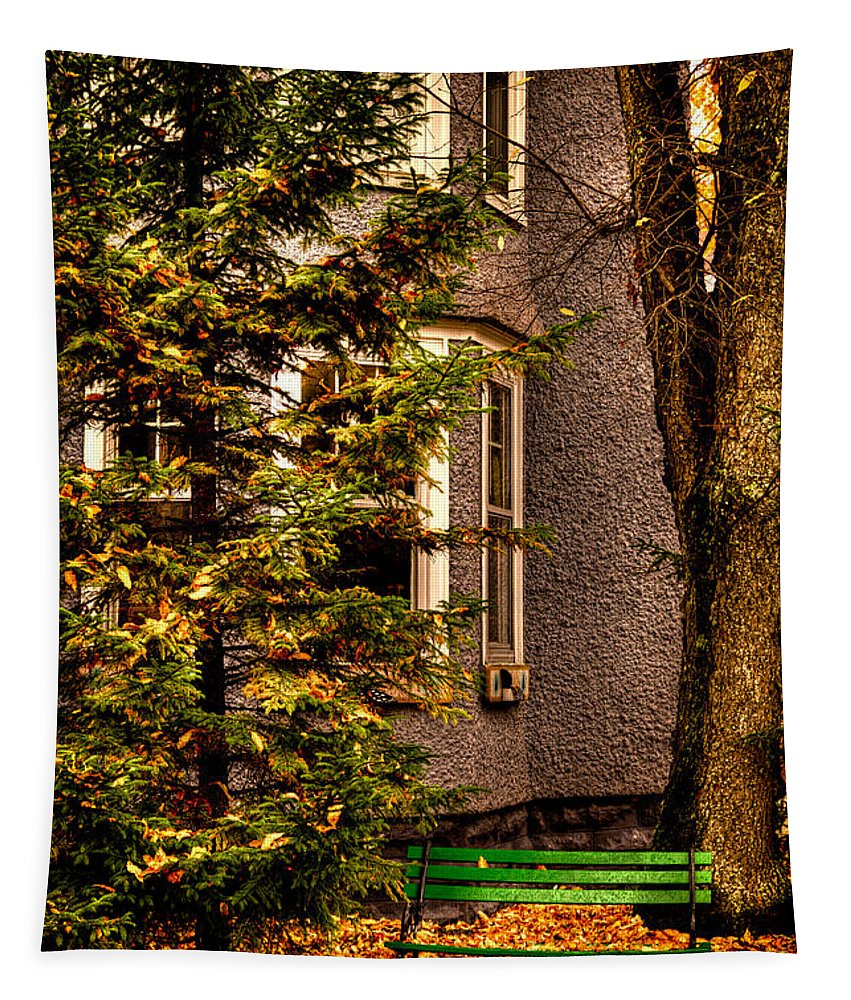 Autumn Tapestry featuring the photograph The Green Bench by David Patterson