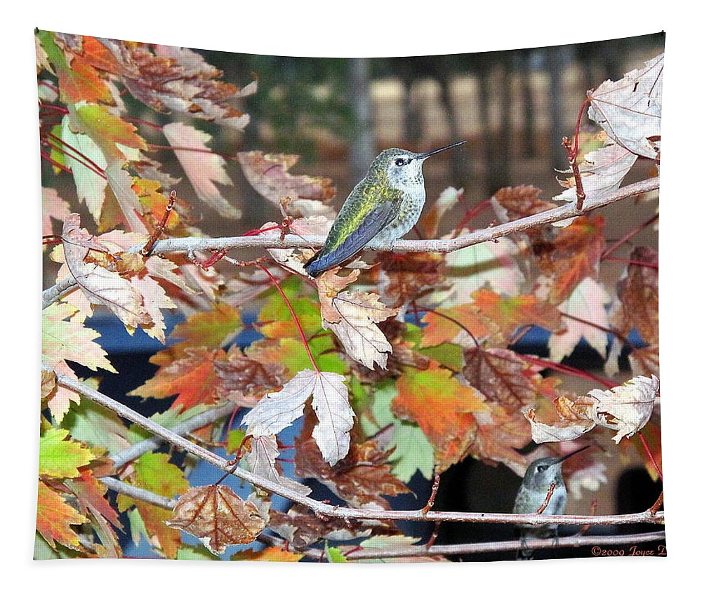 Hummer Tapestry featuring the photograph The Resting Tree by Joyce Dickens