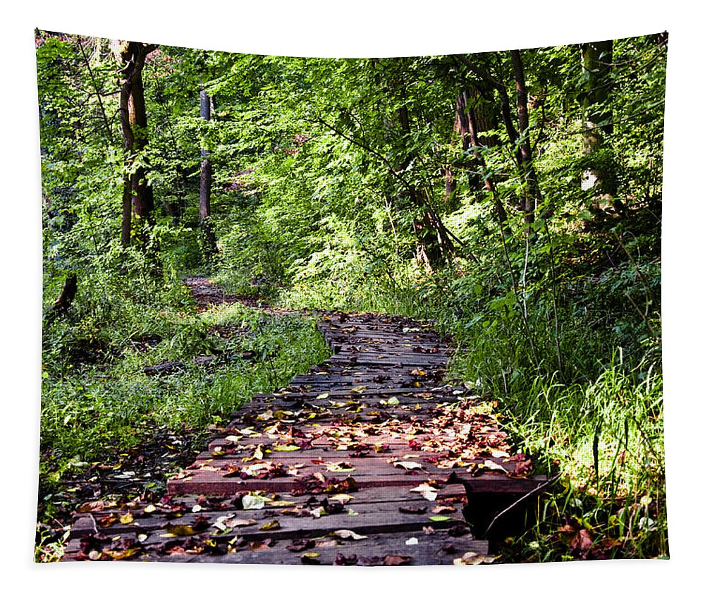 The Road Less Traveled Tapestry featuring the photograph The Road Less Traveled by Bill Cannon