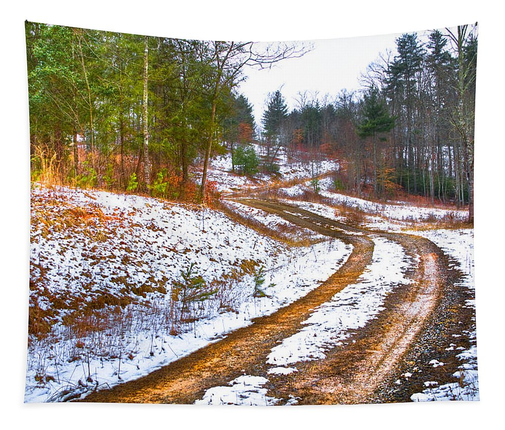 Apalachia Tapestry featuring the photograph The Road To Spring by Debra and Dave Vanderlaan