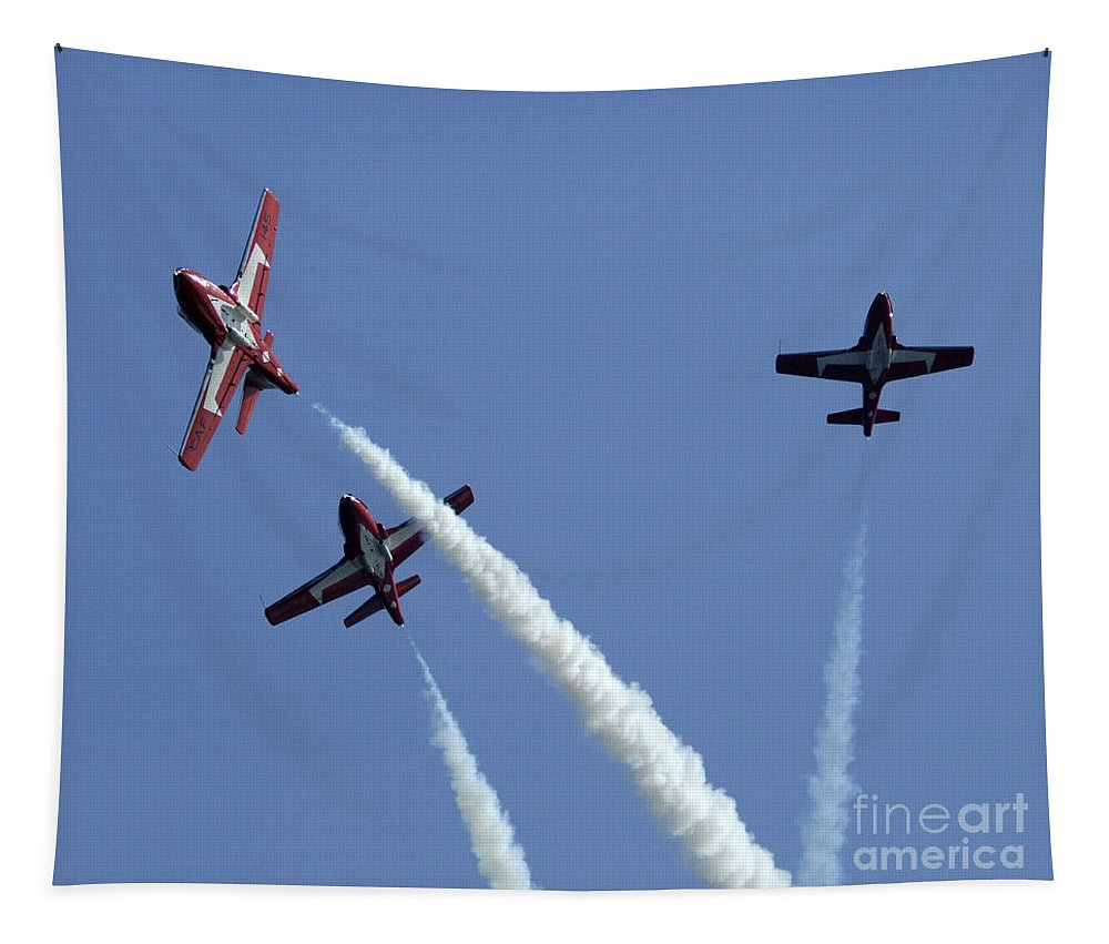 Snowbirds Tapestry featuring the photograph The Snowbirds Having A Blast by Bob Christopher