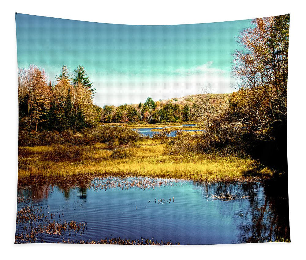 The Adirondacks Tapestry featuring the photograph The Still Of Autumn In The Adirondacks by David Patterson