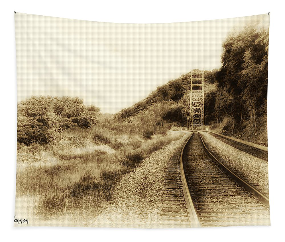 Tracks Tapestry featuring the photograph The Tracks Of My Tears by Bill Cannon
