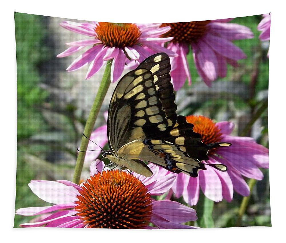 Butterfly Tapestry featuring the photograph Tiger Swallowtail by Linda Francis