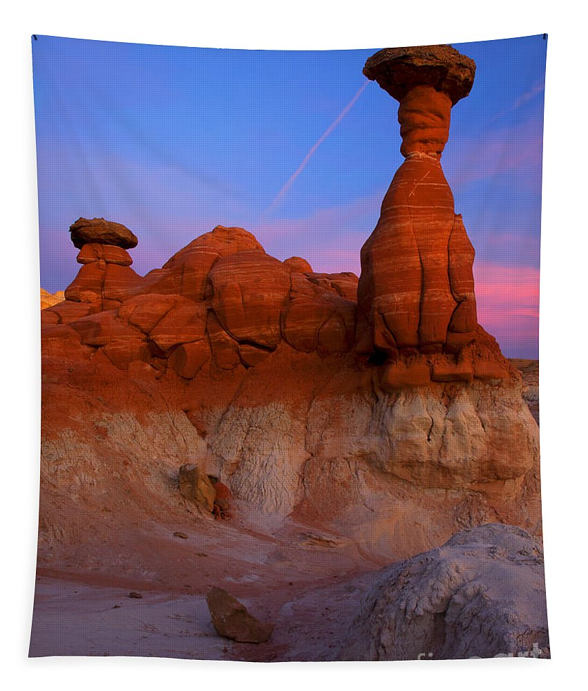 Toadstool Rock Tapestry featuring the photograph Toadstool Dusk by Mike Dawson