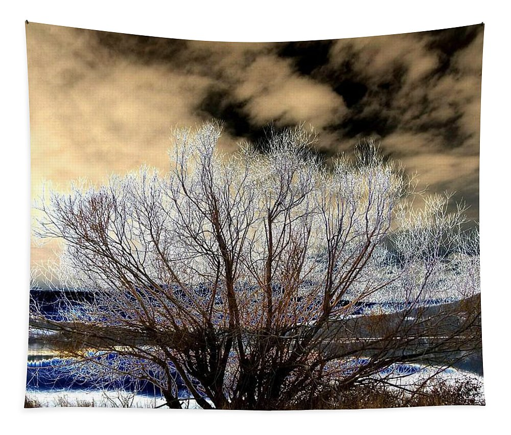 Touch Of Frost Tapestry featuring the digital art Touch Of Frost by Will Borden
