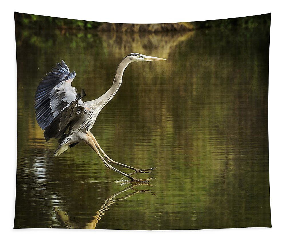 Great Blue Heron Tapestry featuring the photograph Touchdown by Saija Lehtonen