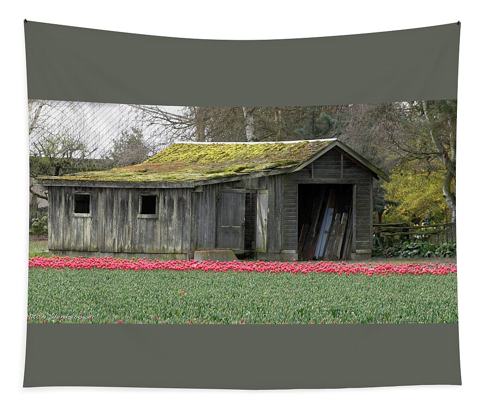 Tulips Tapestry featuring the photograph Tulip Barn by Mitch Shindelbower