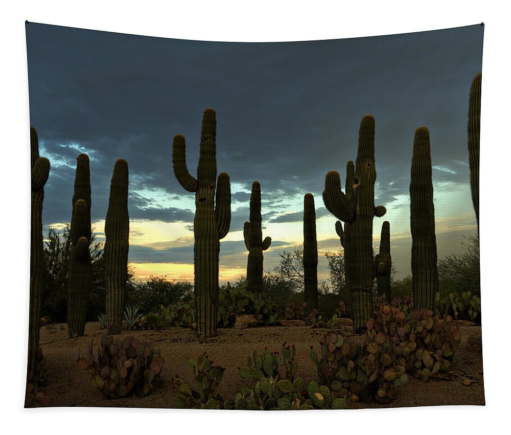 Arizona Tapestry featuring the photograph Turquoise Skies by Saija Lehtonen