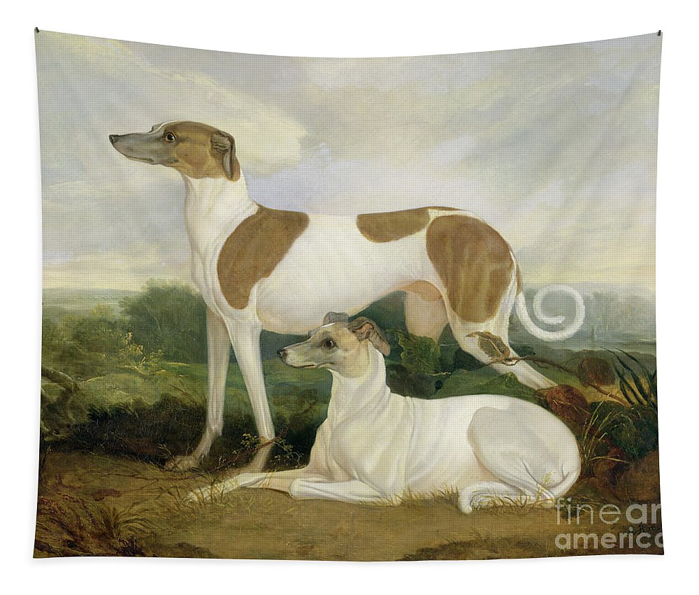 Xyc159885 Tapestry featuring the photograph Two Greyhounds In A Landscape by Charles Hancock