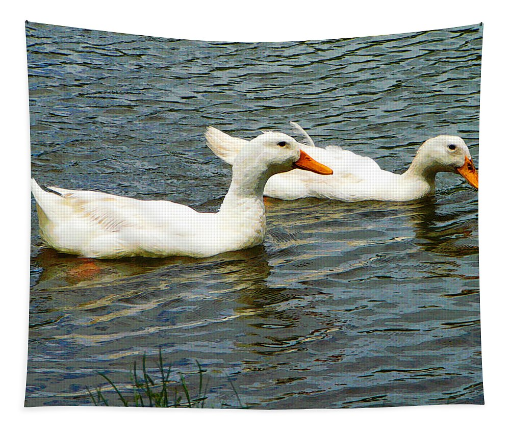 Birds Tapestry featuring the photograph Two White Ducks by Susan Savad