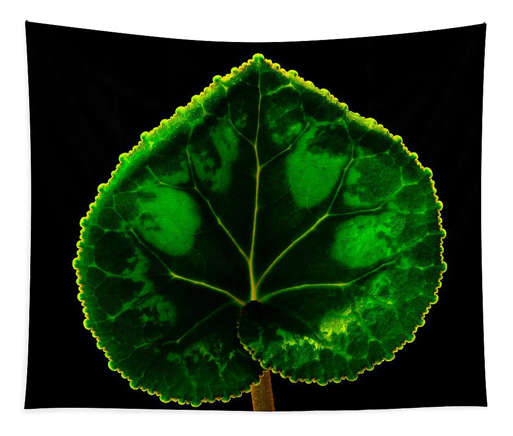 Under Leaf Tapestry featuring the photograph Under Leaf by Mitch Shindelbower