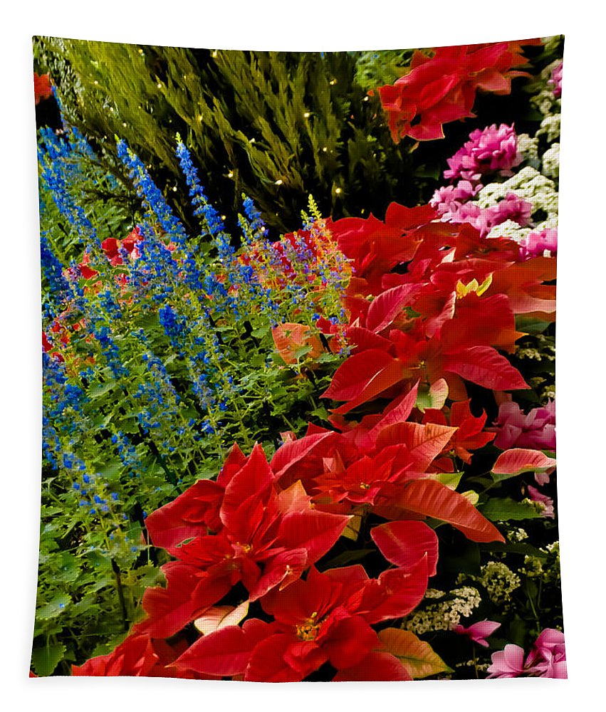 Pointsettia Tapestry featuring the photograph Up All Night by Trish Tritz