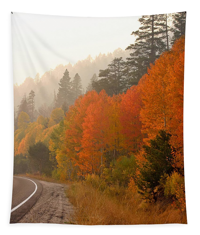 Autumn Tapestry featuring the photograph Up Around The Bend by Mitch Shindelbower