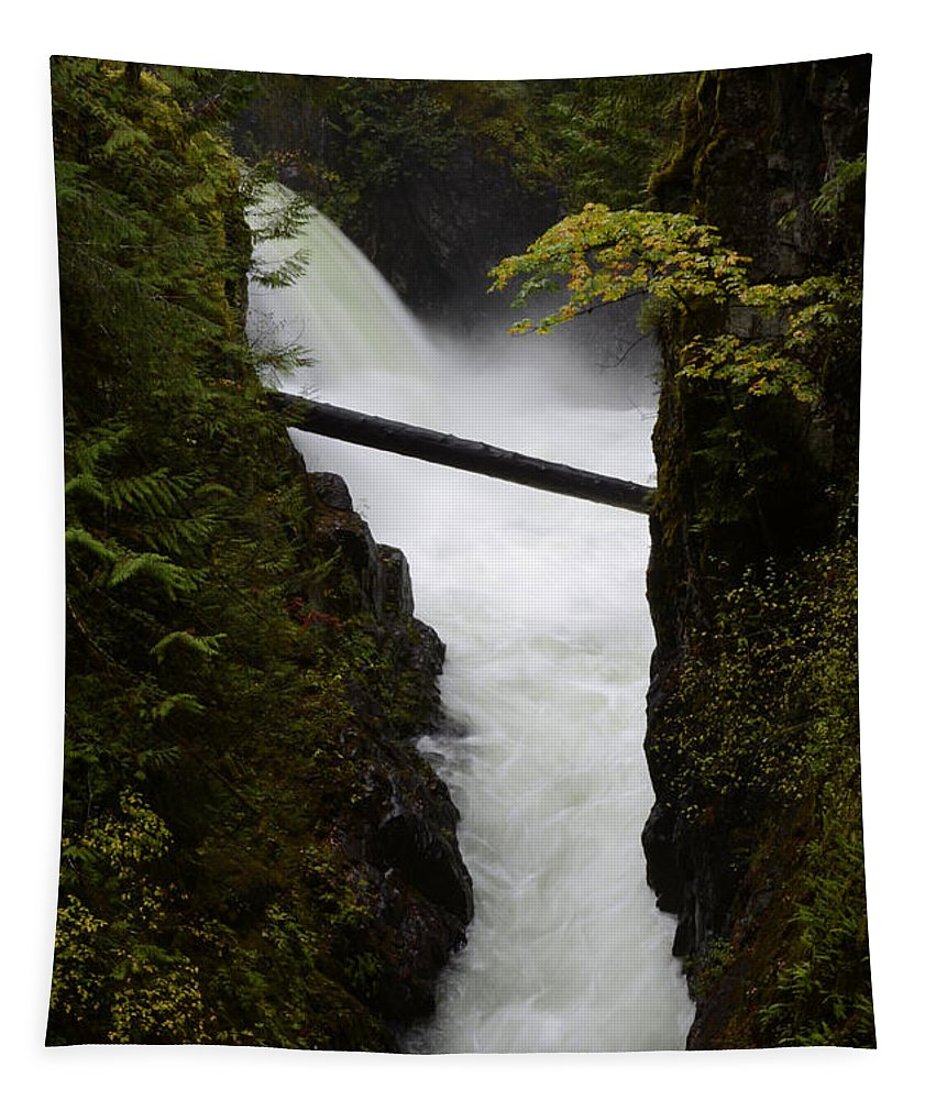 Upper Qualicum Fall Tapestry featuring the photograph Upper Qualicum Falls 2 by Bob Christopher