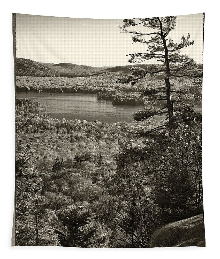 Autumn Tapestry featuring the photograph View From The Top by David Patterson