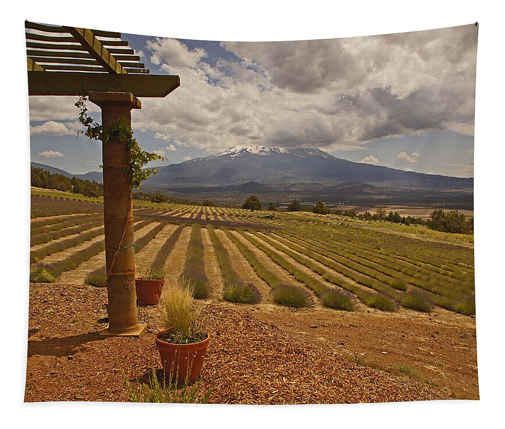 Mt Shasta Tapestry featuring the photograph View Toward Mt Shasta Horizontal by Mick Anderson