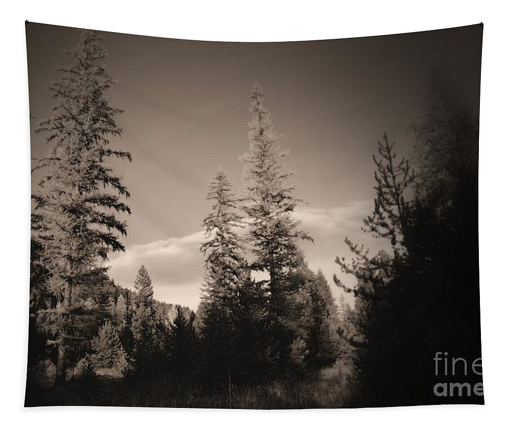 Trees Tapestry featuring the photograph Vignette In Sepia by Jeff Swan