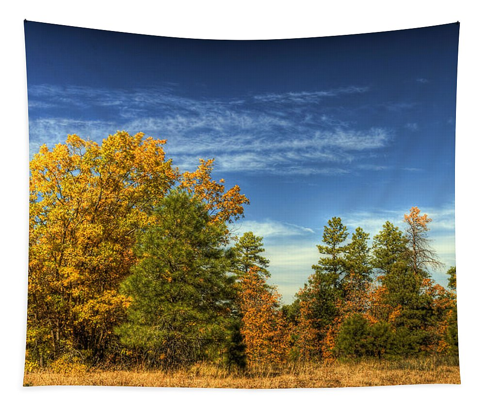Fall Foliage Tapestry featuring the photograph Visions Of Fall by Saija Lehtonen