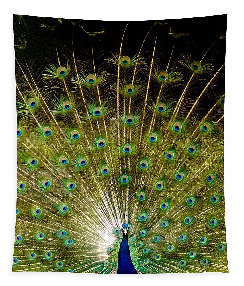 Blue Tapestry featuring the photograph Waiting On A Line Of Blues And Greens by Trish Tritz