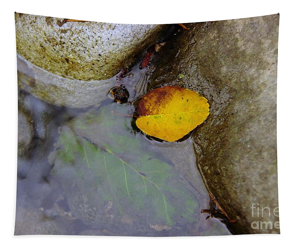 Water Tapestry featuring the photograph Washed Ashore by Jeff Swan