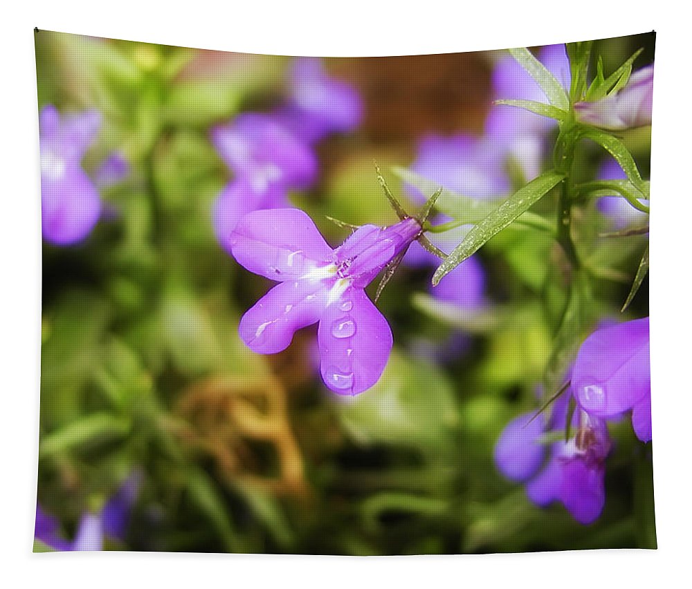 Water Drops On A Purple Flower Tapestry featuring the photograph Water Drops On A Purple Flower by Bill Cannon