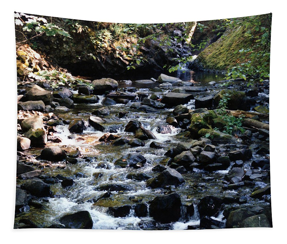 Oregon Tapestry featuring the photograph Water Over Rocks by Maureen E Ritter
