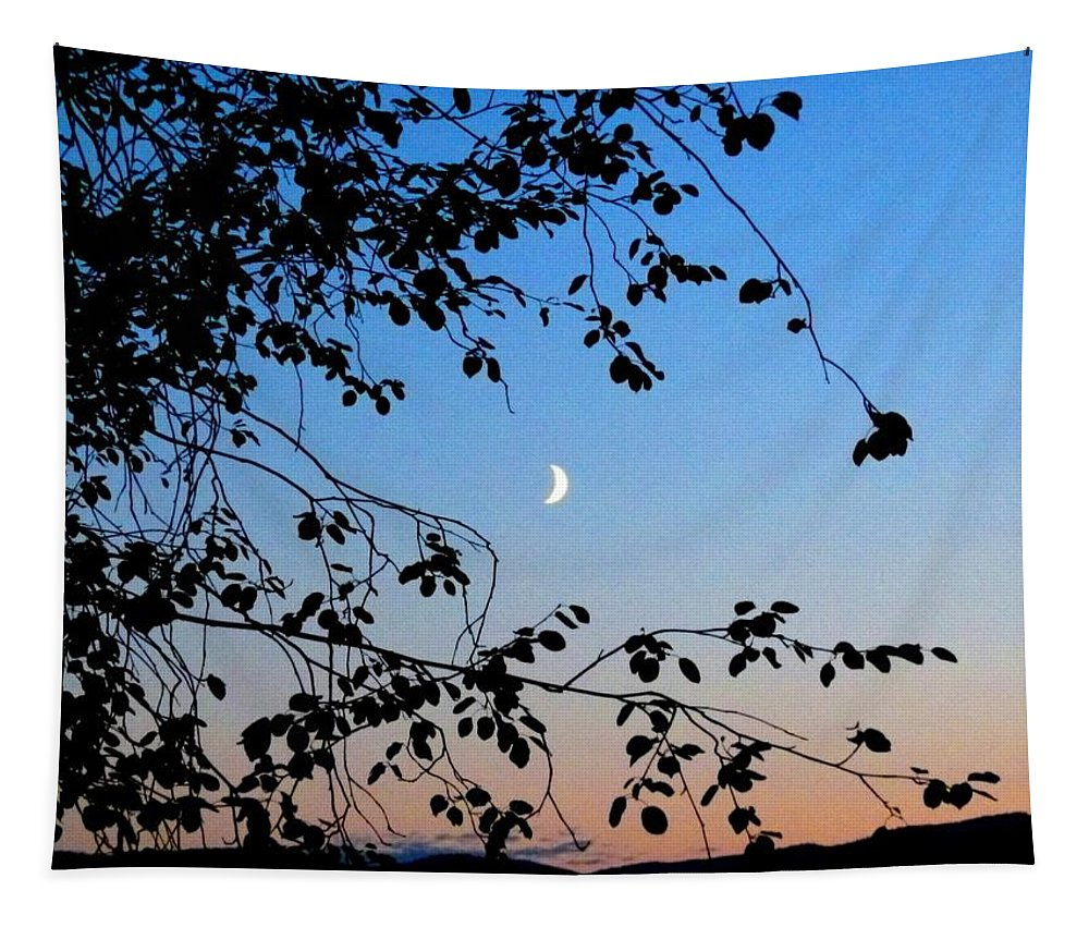Moon Tapestry featuring the photograph Waxing Crescent Moon by Will Borden