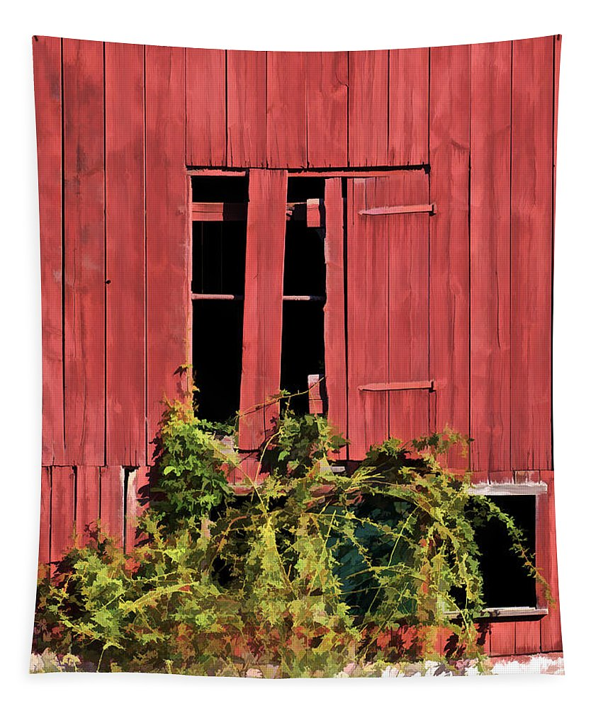 Agriculture Tapestry featuring the photograph Weathered Broken Red Barn Window Of New Jersey by David Letts