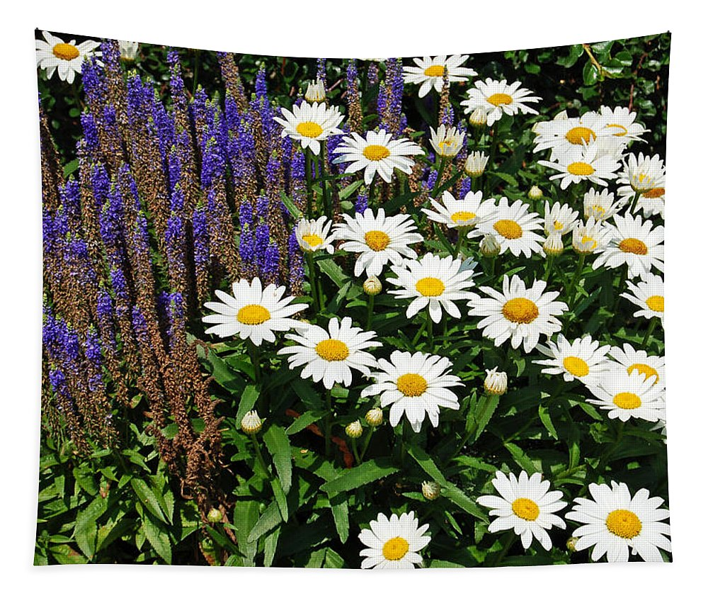 Daisy Tapestry featuring the photograph White Daisies by Aimee L Maher ALM GALLERY