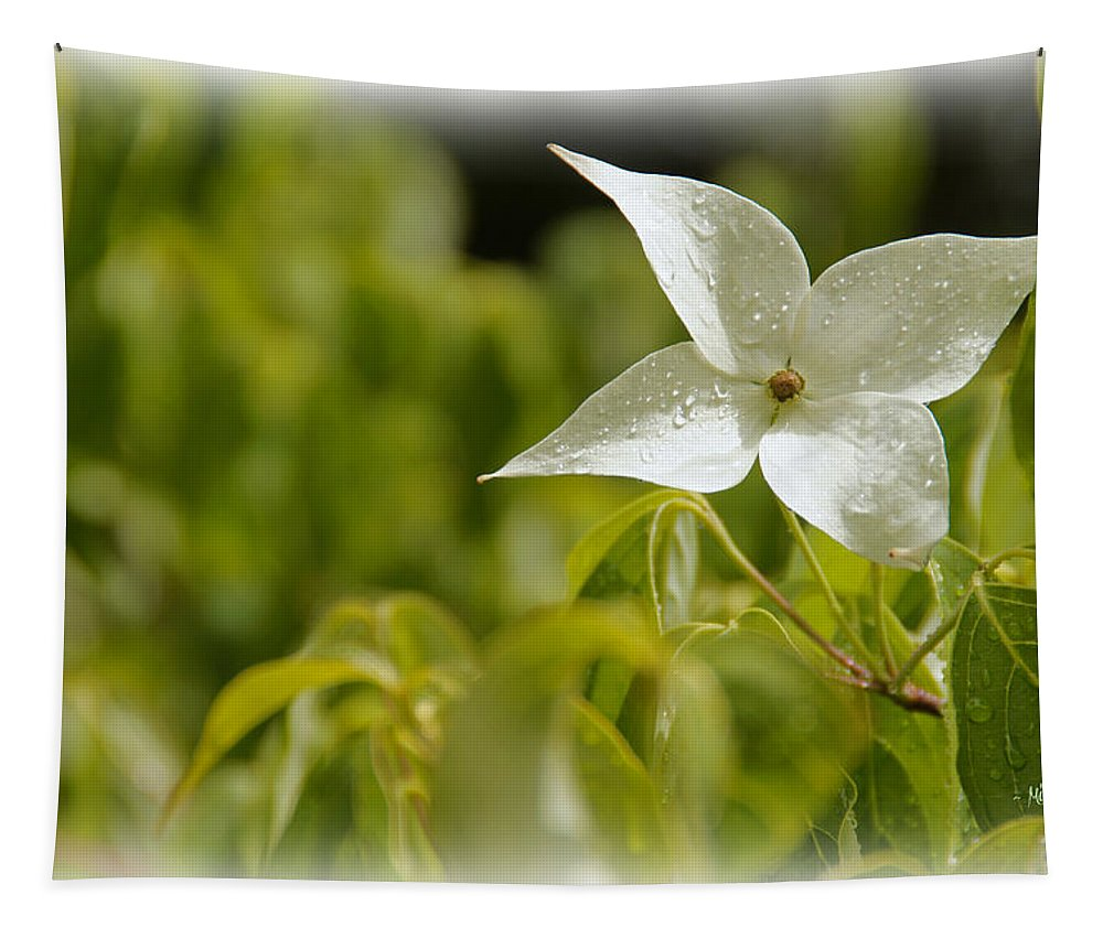 White Tapestry featuring the photograph White Dogwood After A June Rain by Mick Anderson