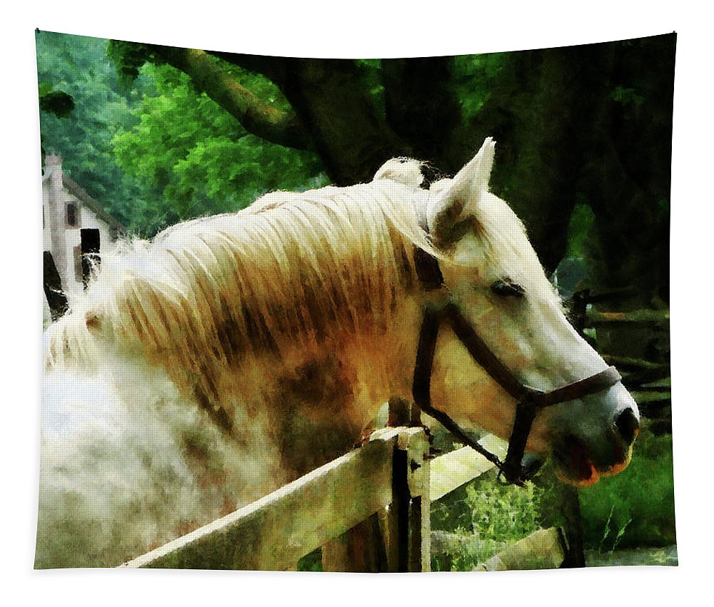 Horse Tapestry featuring the photograph White Horse Closeup by Susan Savad