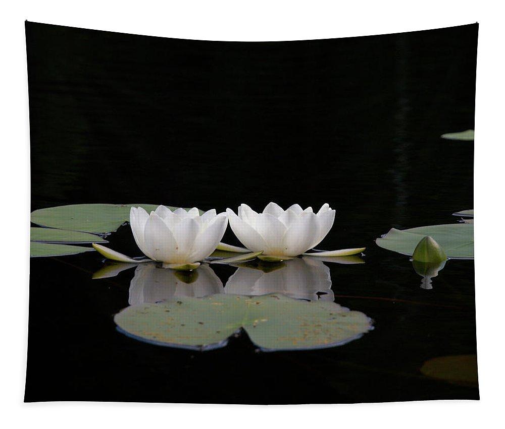 Lehtokukka Tapestry featuring the photograph White Water-lily 6 by Jouko Lehto