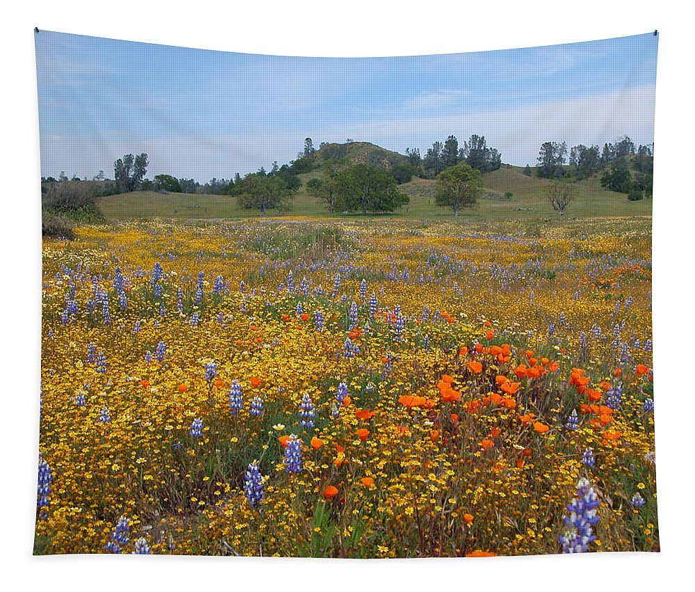 Wildflowers Tapestry featuring the photograph Wildflower Wonderland 8 by Lynn Bauer