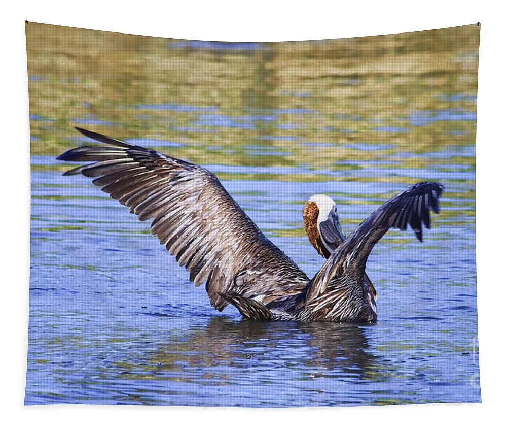 Pelican Tapestry featuring the photograph Wings Up by Deborah Benoit