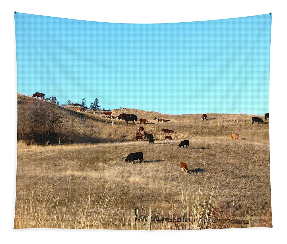 Winter Tapestry featuring the photograph Winter Grazing by Will Borden