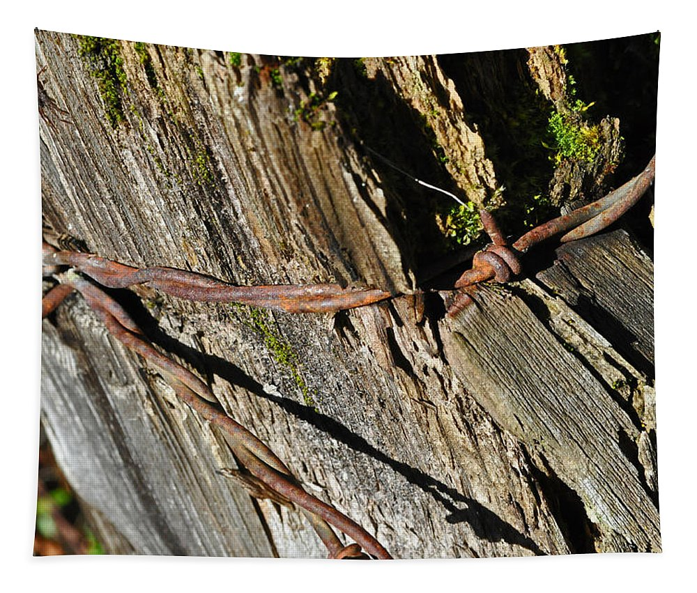 Wire Tapestry featuring the photograph Wired Fence Post by Tikvah's Hope