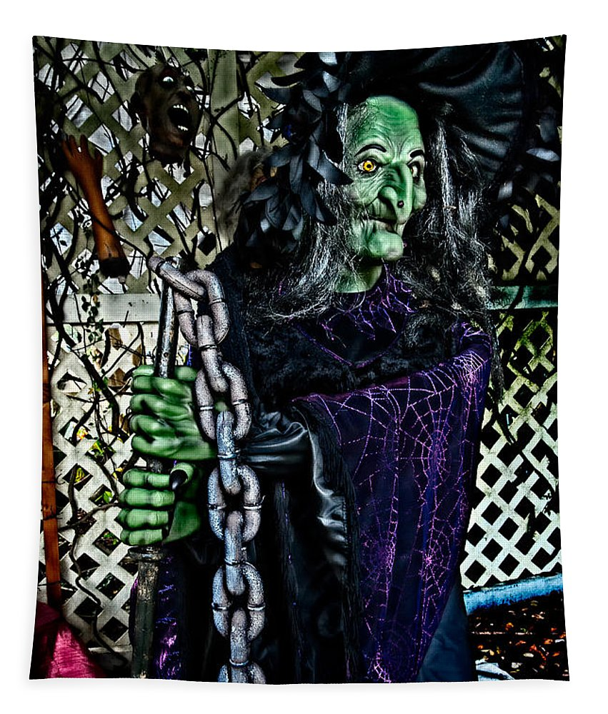 Halloween Tapestry featuring the photograph Witchy by Christopher Holmes