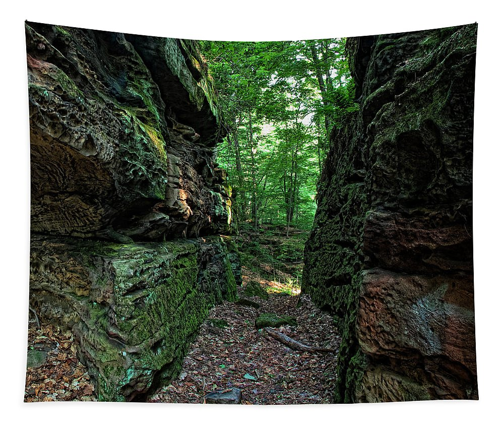 Ohio Tapestry featuring the photograph Worden's Ledges by Dale Kincaid