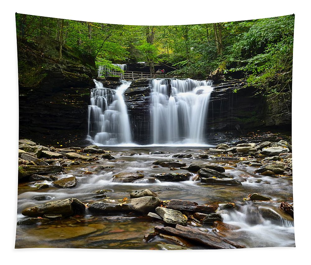 Ricketts Tapestry featuring the photograph Wyandot Falls by Frozen in Time Fine Art Photography