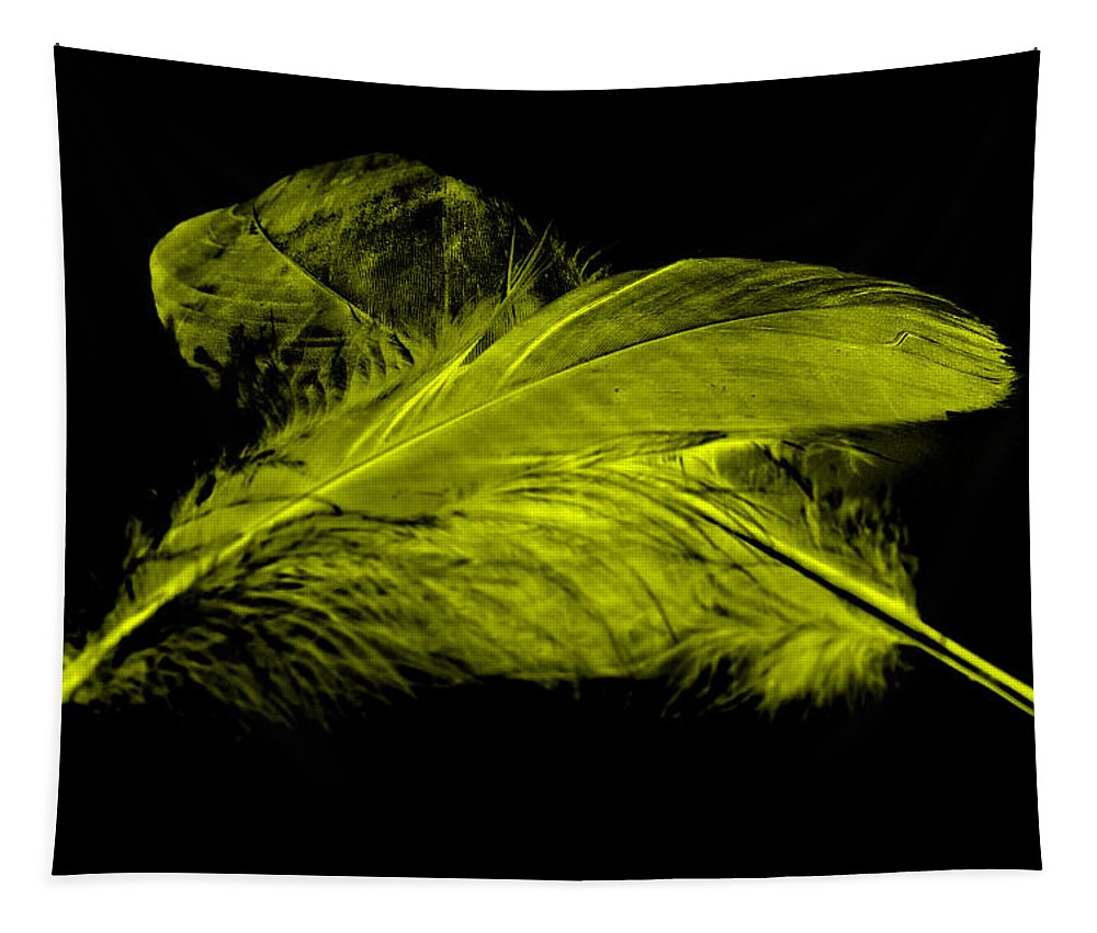 Yellow Goose Tapestry featuring the photograph Yellow Ghost On Black by Steve Purnell