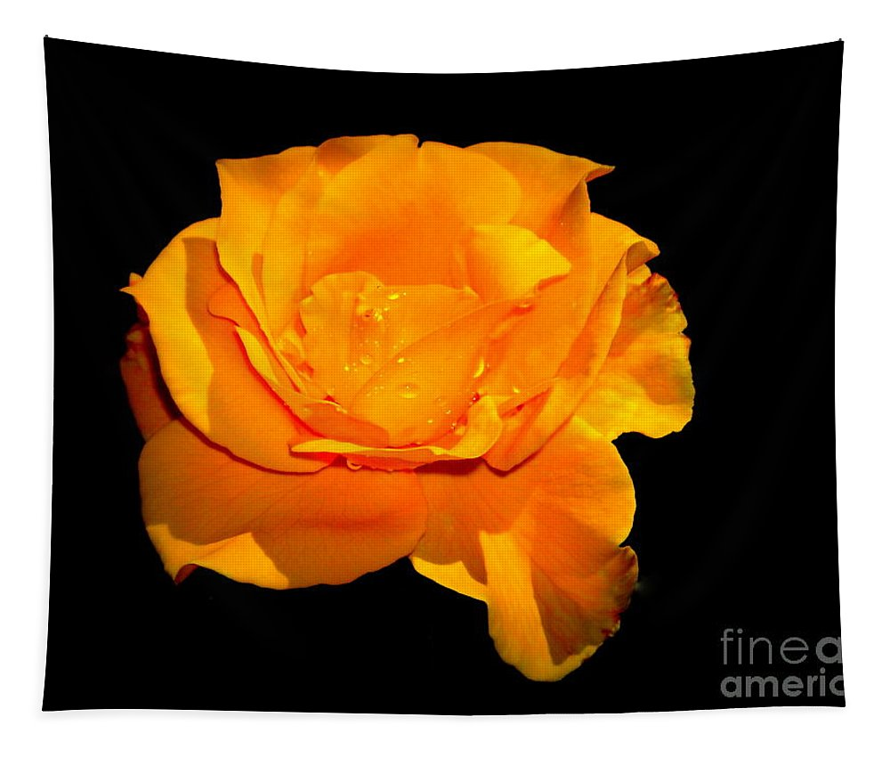 Yellow Tapestry featuring the photograph Yellow by Paul Wilford