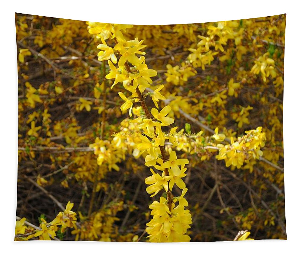 Golden Threads Tapestry featuring the photograph Yellow Strand by Sonali Gangane
