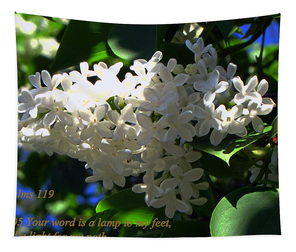 Psalms 119 Tapestry featuring the photograph Your Light by Tikvah's Hope