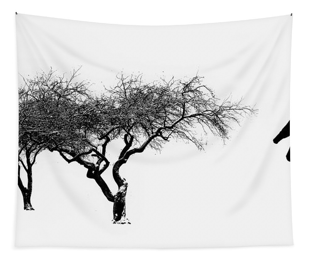 Cherry Tapestry featuring the photograph Zen by Bill Cannon