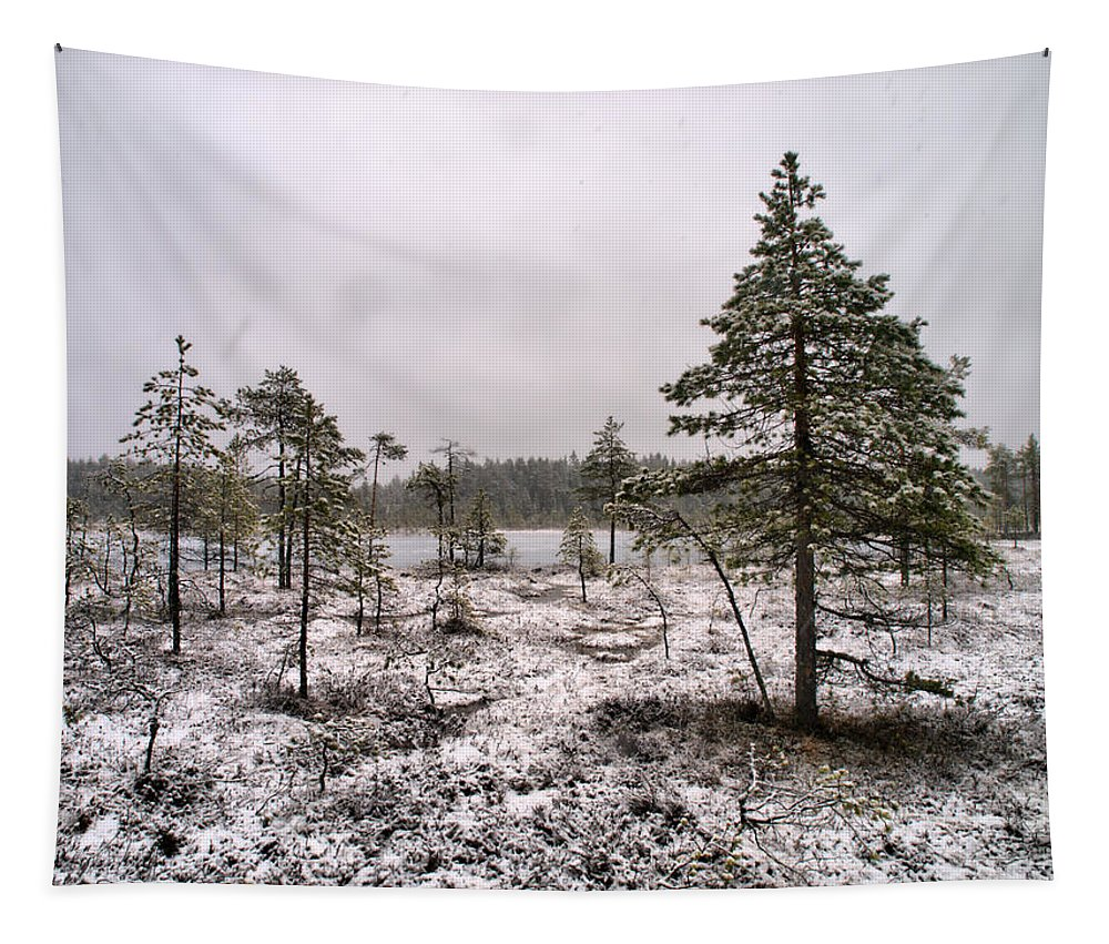 Seitseminen Tapestry featuring the photograph April Snow 1 by Jouko Lehto