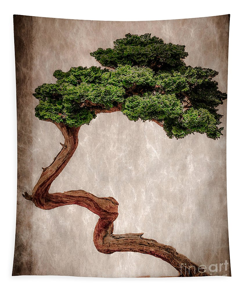 Chinese Tapestry featuring the photograph Bonsai by Tom Gari Gallery-Three-Photography