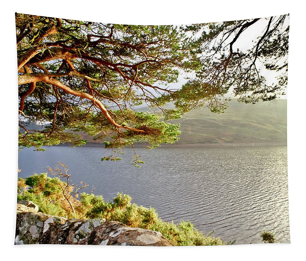 Glencorse Tapestry featuring the photograph Warmth Of The Pine Branch. by Elena Perelman