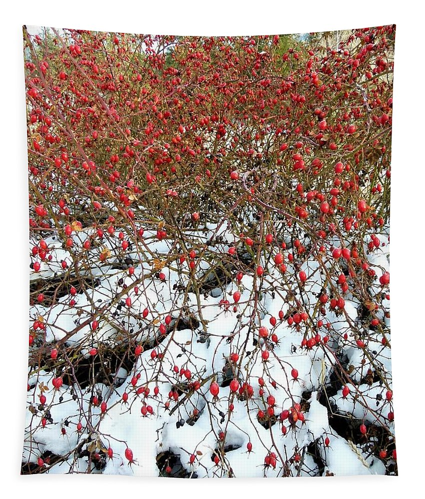 Winter Tapestry featuring the photograph Winter Harvest 2 by Will Borden