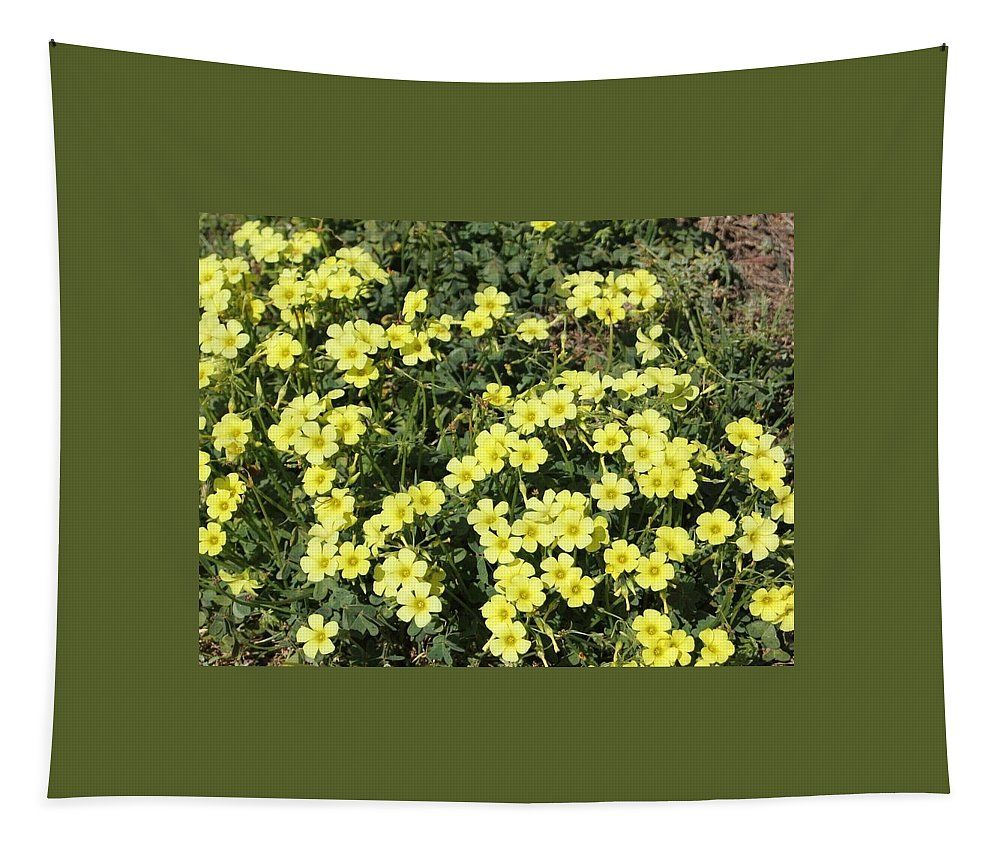 Flowers Tapestry featuring the photograph A Cluster Of Sunshine by Norma Jean Lipert